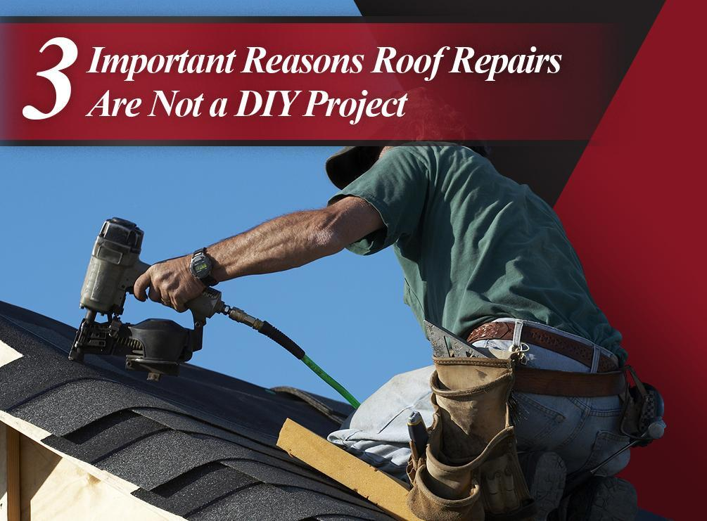 3 Important Reasons Roof Repairs Are Not a DIY Project